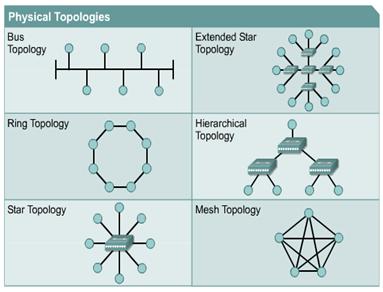 انواع شبکه از نظر توپولوژی اتصال یا هم بندی